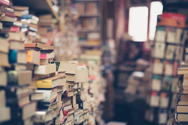 Sürdürülebilirlik Kitapları
